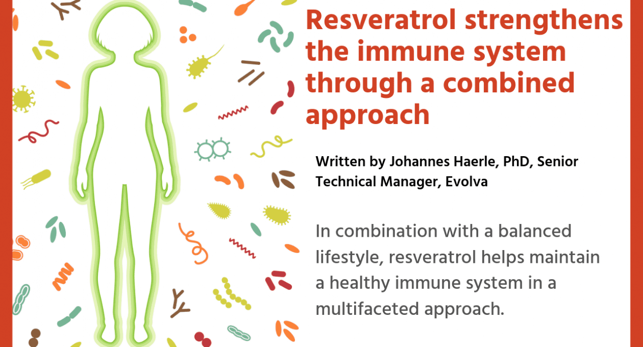 Resveratrol strengthens the immune system through a combined approach