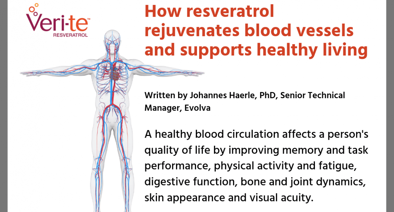 How resveratrol rejuvenates blood vessels and supports healthy living
